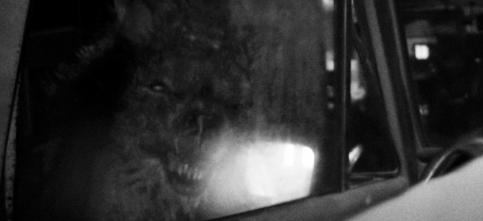 Skinwalker Ranch (2013) (2)