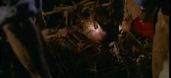 Colheita Maldita 2 (1993) (2)