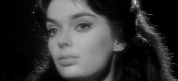 barbara steele facebook