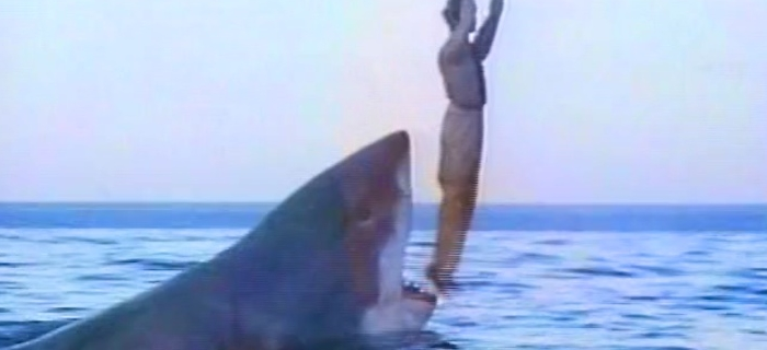 O Último Tubarão (1981)