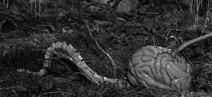 O Horror Vem do Espaço (1958) (2)