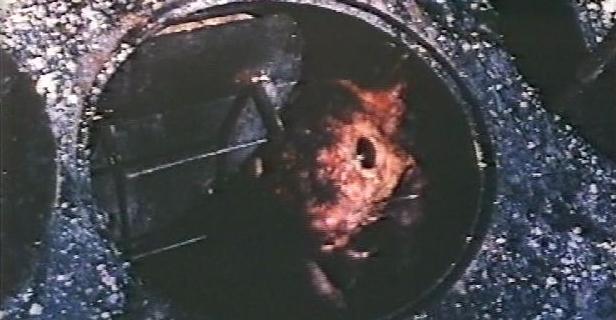 Pânico (1976) (4)