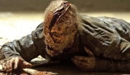 The Walking Dead vai ganhar spin off em 2015