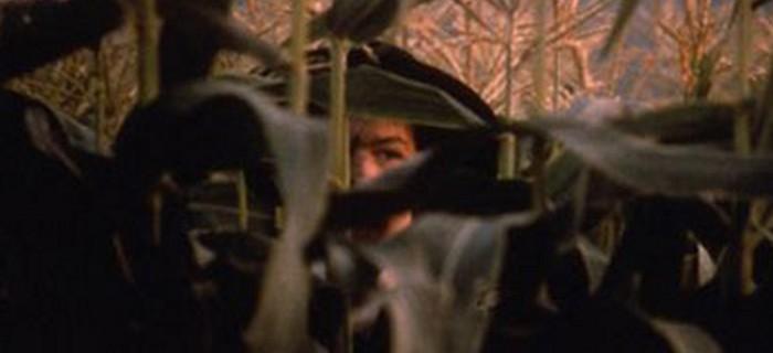 Colheita Maldita 4 (1996) (8)