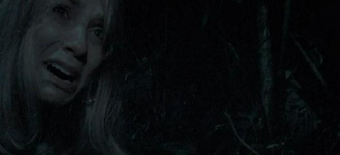 Desaparecidos (2011) (3)