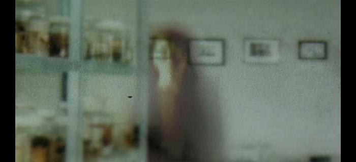 Espíritos (2004) (5)