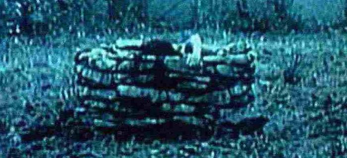 Ringu (1998) (4)