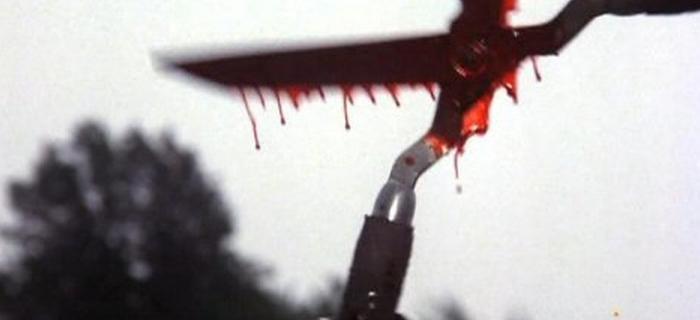 Chamas da Morte (1981)