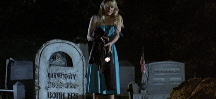 The Prowler (1981) (5)