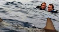 Tubarões irão transformar a vida de duas irmãs em um inferno na produção 47 Meters Down.