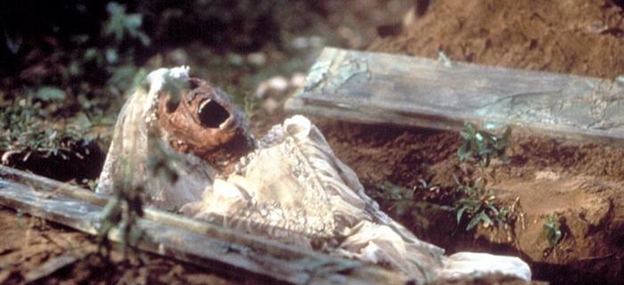 A Maldição dos Mortos-Vivos (1988) (5)