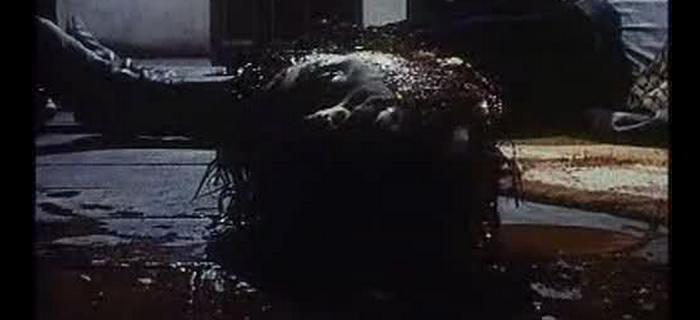 La Orgía de los Muertos (1973) (2)
