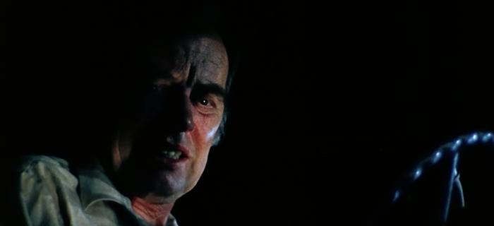 O Massacre da Serra Elétrica (1974) (6)