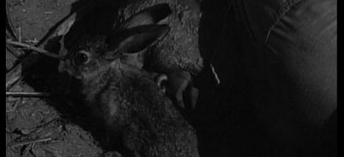 A Besta de Yucca Flats (1961) (4)