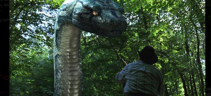 Boa Vs Python (2004) (2)