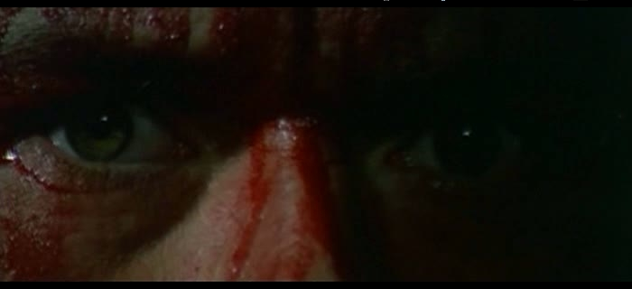 Gato Negro (1981) (1)