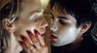 Com uma capa exagerada e um título comercial, a sinopse tentará atraí-lo com palavras de impacto, numa espécie de sedução vampírica!
