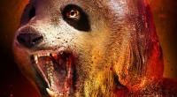 Produções da TomCat Films contam com criaturas monstruosas e efeitos de segunda.