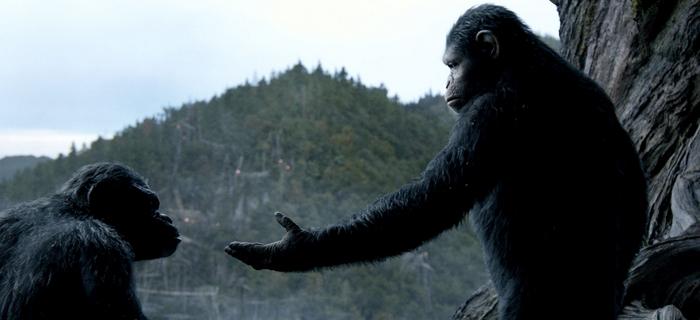 Planeta dos Macacos (2014) (4)