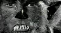 É nesse filme que encontramos uma das cenas mais clássicas da filmografia bagaceira, ícone folclórico do cinema B americano!