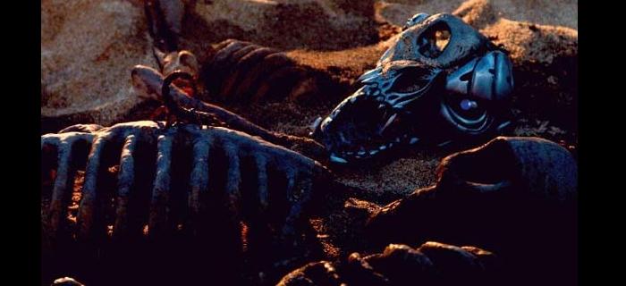 Rottweiler (2004) (3)