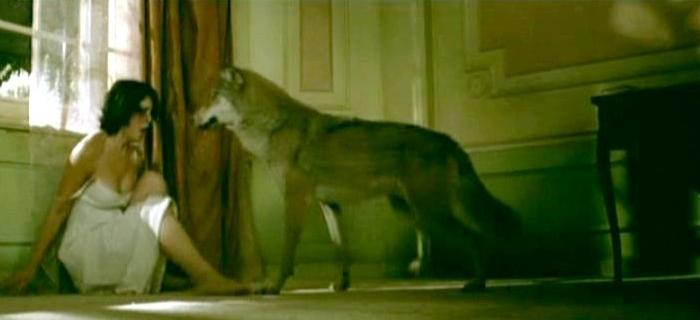 Sangue e Chocolate (2007) (2)