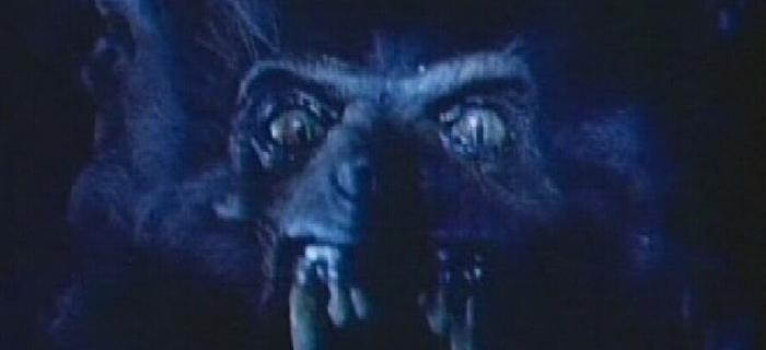 Werewolf (1995) (4)