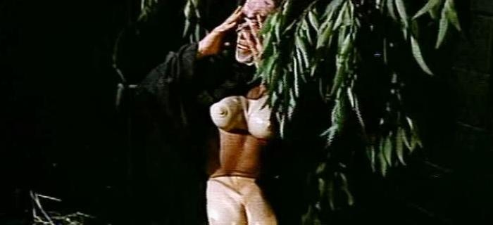 A Estranha Hospedaria (1976) (8)