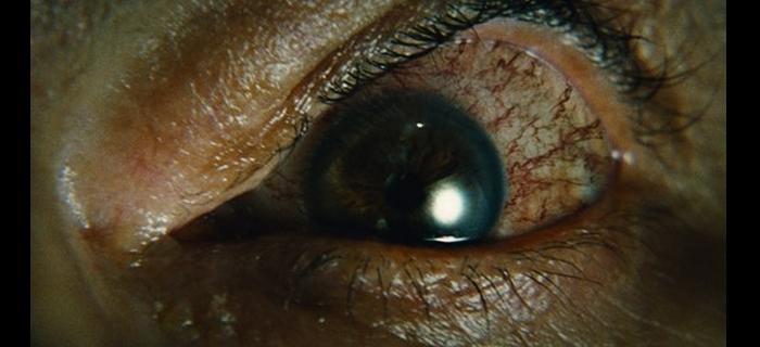 Encarnação do Demônio (2008) (17)