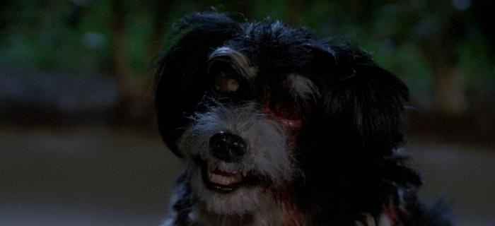 A Noite dos Arrepios (1986) (21)