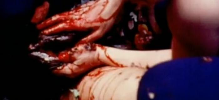 Aniversário Macabro (1972) (13)