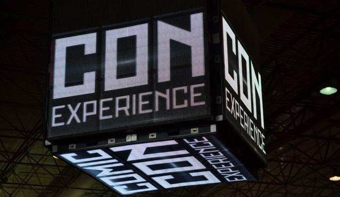 Comic Con Experience (2014)