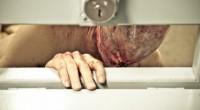 Cell Count, um body horror que não esconde a inspiração em Cronenberg!
