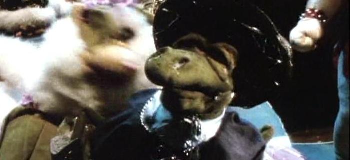 Conheça os Feebles (1989) (2)