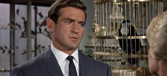 Os Pássaros (1963)