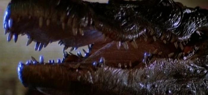 Alligator (1980) (3)