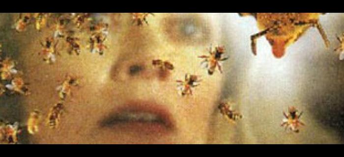 Invasão Mortal (1995) (3)