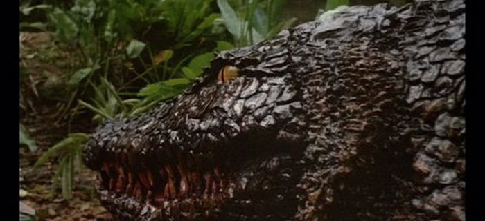 Killer Crocodile (1989) (2)