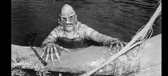 O Monstro da Lagoa Negra (1954) (2)