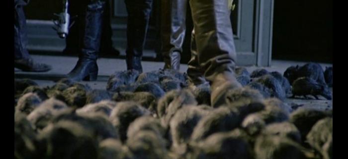 Ratos (1983) (12)