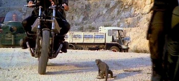 Ratos (1983) (6)