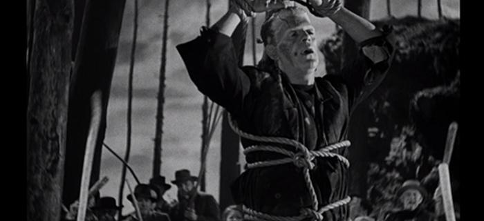 A Noiva de Frankenstein (1935) (4)