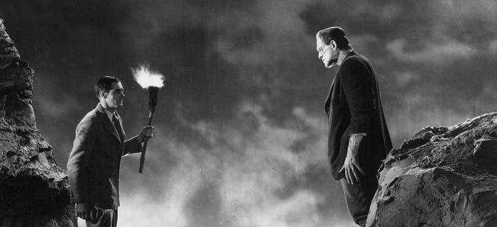Frankenstein (1931) (1)