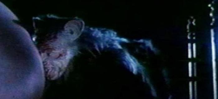The Evil Clergyman (1987) (8)