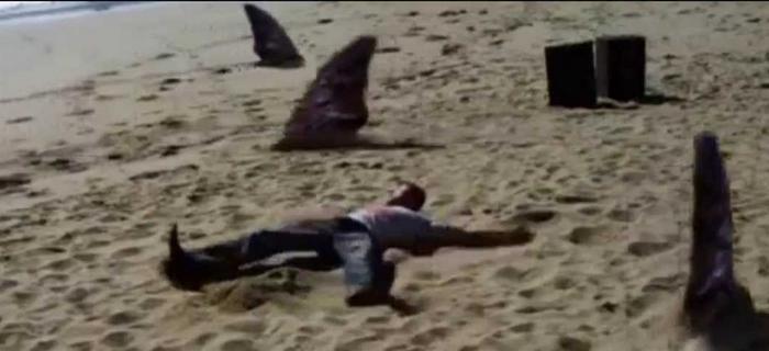 Sand Sharks (2011) (4)