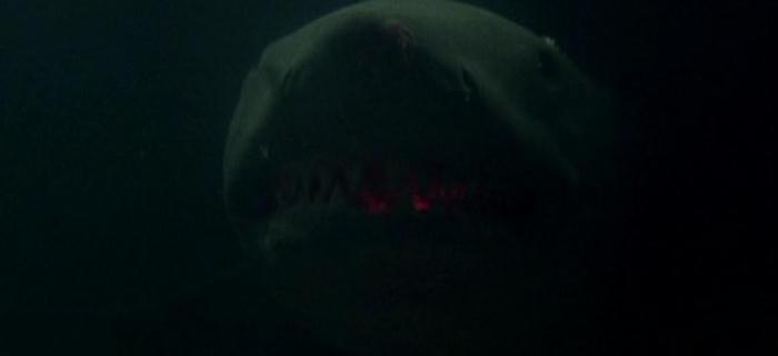 Tubarão 3 (1983) (10)