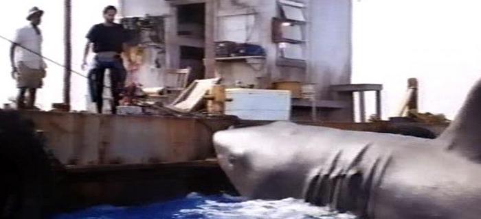 Tubarão 4 - A Vingança (1987) (4)