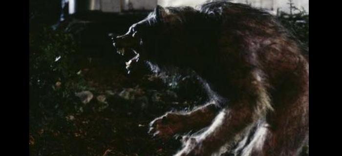 Lua Negra (1996) (4)