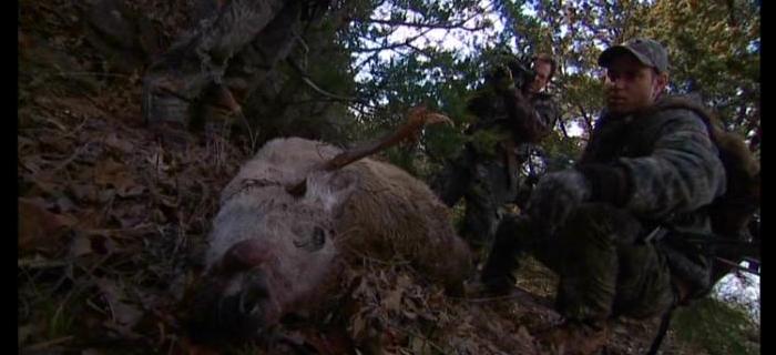 Terror na Floresta (2006)
