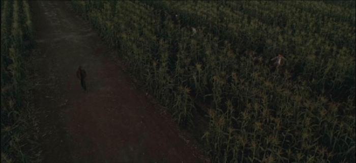 Colheita Maldita 6 (1999) (1)